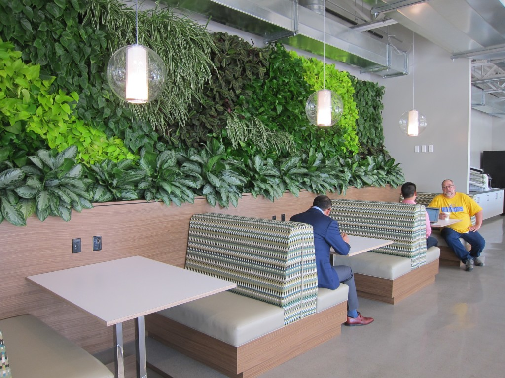 Living wall at NextEV HQ, photo by Alison van Diggelen